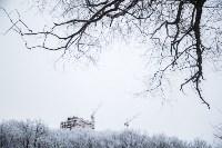 Темная сторона Платоновского парка, Фото: 8