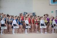 Первенство ЦФО по спортивной гимнастике, Фото: 30