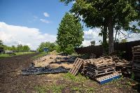 Коровы, свиньи и горы навоза в деревне Кукуй: Роспотреб требует запрета деятельности токсичной фермы, Фото: 28