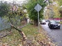 На ул. Тимирязева машина повалила дерево после ДТП с такси, Фото: 4