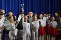 Открытый Чемпионат Тульской области по черлидингу, Фото: 69