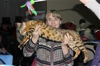В Туле прошла международная выставка кошек, Фото: 51