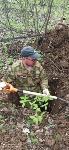 В Тульской области обнаружено еще одно братское захоронение советских воинов времен ВОВ, Фото: 23
