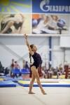 Спортивная гимнастика в Туле 3.12, Фото: 134