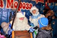 В Белоусовском парке появилась резиденция Деда Мороза, Фото: 15