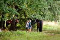 Новые лошади для конной полиции в Центральном парке, Фото: 15
