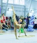 Кубок общества «Авангард» по художественной гимнастики, Фото: 71