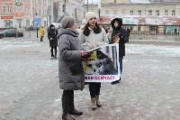 Более 8000 туляков требуют запретить убийство бездомных животных, Фото: 22