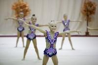 """Соревнования по художественной гимнастике """"Осенний вальс"""", Фото: 142"""