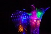 В Туле открылся I международный фестиваль молодёжных театров GingerFest, Фото: 116