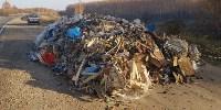 Столичный мусор в Тульской области, Фото: 6