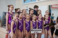 Первенство ЦФО по спортивной гимнастике, Фото: 34