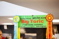 """Выставка """"Пряничные кошки"""". 15-16 августа 2015 года., Фото: 4"""