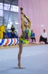 Соревнования по художественной гимнастике 31 марта-1 апреля 2016 года, Фото: 33