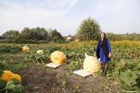 Гигантские тыквы из урожая семьи Колтыковых, Фото: 19