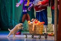Театр кошек в ГКЗ, Фото: 55