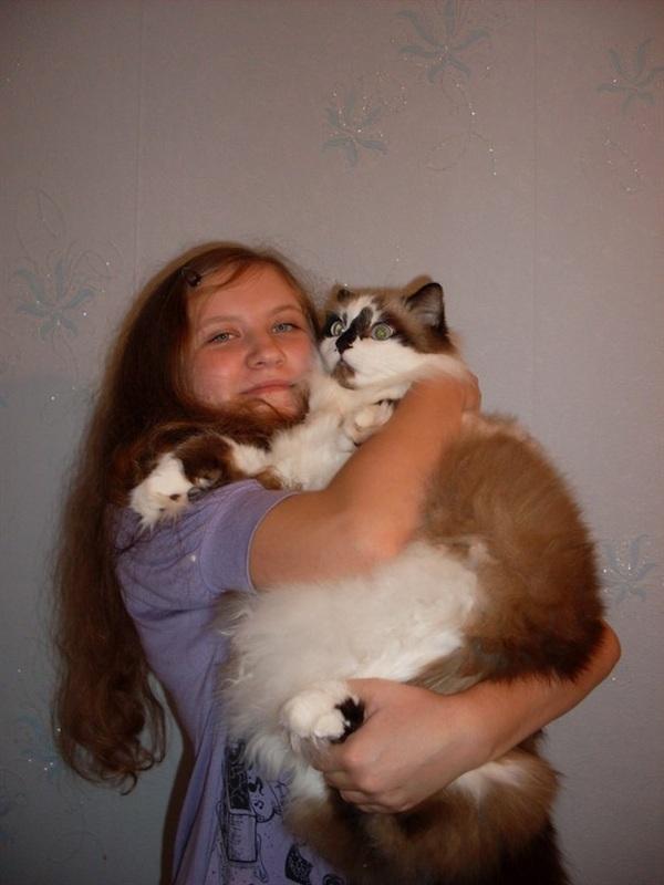 Мурзик 10 лет 7-8 килограмм