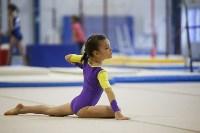 Спортивная гимнастика в Туле 3.12, Фото: 117