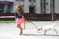 Собака от президента. 1 июня 2015, Фото: 9
