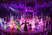 Тульским пенсионеркам на 8 Марта подарили поход в цирк, Фото: 40