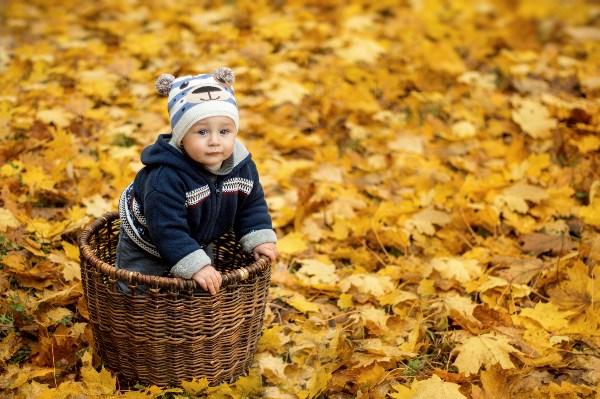 Лёня плавает в море листьев