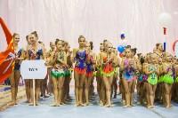 Открытый кубок региона по художественной гимнастике, Фото: 58