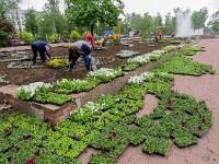 В Кировском сквере Тулы высадят 20 тысяч цветов, Фото: 3