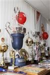 Галерея спортивных достижений, Фото: 14