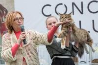 Выставка кошек в Туле, Фото: 7