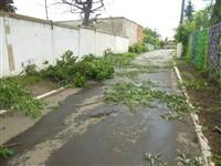 Ураган в Плавске, Фото: 8