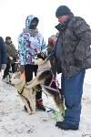 Праздник северных собак на Куликовом поле , Фото: 68