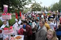 В Пролетарском округе Тулы начали праздновать День города, Фото: 7