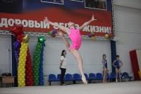 Соревнования по спортивной гимнастике на призы Заслуженных мастеров спорта , Фото: 68
