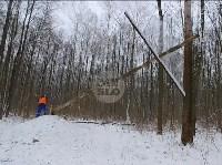В Тульском лесу нашли загадочную поляну с крестами, елкой и зеркалами, Фото: 1