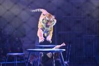Цирковое шоу, Фото: 110