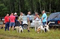 Выставка охотничьих собак под Тулой, Фото: 15