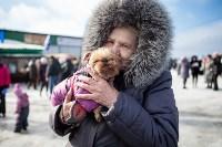 Масленица в Прилепах. 21.02.2015, Фото: 60