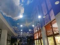 потолки, Фото: 8
