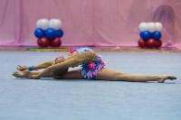 Соревнования по художественной гимнастике 31 марта-1 апреля 2016 года, Фото: 52