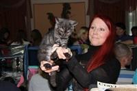 В Туле прошла международная выставка кошек, Фото: 36