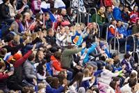 Женский хоккейный матч Канада-Финляндия. Зимняя Олимпиада в Сочи, Фото: 27