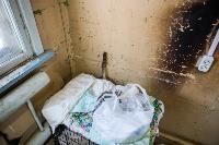 Волонтеры спасли кошек из адской квартиры, Фото: 45