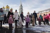 В Тульском кремле проходят масленичные гуляния, Фото: 23