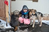 Праздник северных собак на Куликовом поле , Фото: 127