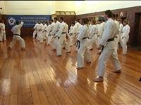 Vеждународный семинар известного мастера данного стиля японца Ханши Дзендзи Идэгучи, Фото: 6