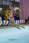 Соревнования по художественной гимнастике 31 марта-1 апреля 2016 года, Фото: 48