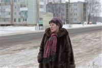 Лазарево. 4 февраля 2014, Фото: 4
