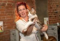 Выставка кошек в Искре, Фото: 43