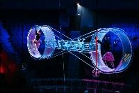 Шоу Lovero в тульском цирке, Фото: 15