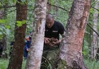 В лесу под Тулой поисковики нашли тайник с гранатами, Фото: 32